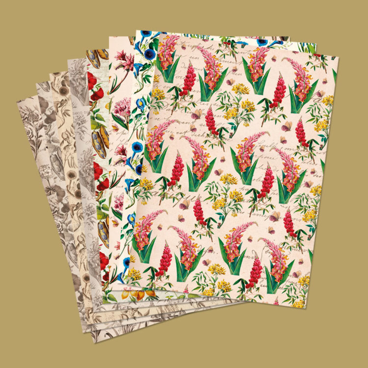 carta-per-scrapbooking-flowers